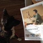 映画『犬に名前をつける日』で、犬連れ対談