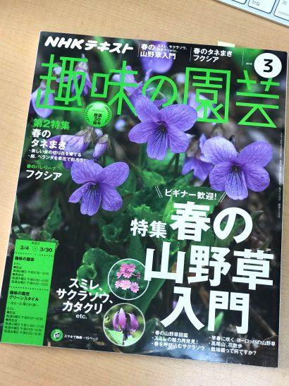 NHK「趣味の園芸」3月号テキスト。4週目放送の「解決!ガーデンマスター#13」のコーナーを担当しました。